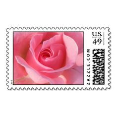 ==> consumer reviews          	Single pink rose postage stamps           	Single pink rose postage stamps we are given they also recommend where is the best to buyHow to          	Single pink rose postage stamps lowest price Fast Shipping and save your money Now!!...Cleck Hot Deals >>> http://www.zazzle.com/single_pink_rose_postage_stamps-172335657846483852?rf=238627982471231924&zbar=1&tc=terrest