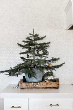 Farmhouse Christmas Decorating Ideas: Our Christmas Kitchen – Boxwood Ave – The Best DIY Outdoor Christmas Decor Farmhouse Christmas Kitchen, Rustic Christmas, Simple Christmas, Christmas Home, Vintage Christmas, Christmas Holidays, Christmas Crafts, Christmas Ornaments, Christmas Quotes
