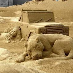 Sleeping Lions and Jeep Sand Art...