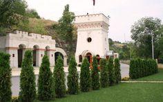 Moldova, Pisa, Public, Tower, Building, Travel, Rook, Viajes, Computer Case