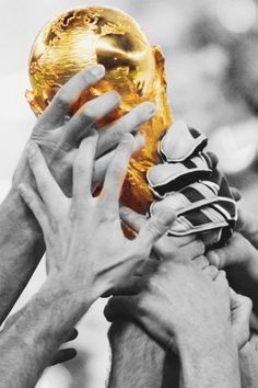 I wish to one day attend a Fifa world cup soccer game. I want to experience the excitement and frustrations that come along with every exciting game. And more so the excitement if my team were to win!
