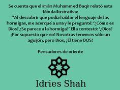"""#sufis #sufismo Imán Baqir Se cuenta que imán Muhammed Baqir relató esta fábula ilustrativa: """"Al descubrir que podía hablar el lenguaje de las hormigas, me acerqué a una y le pregunté: '¿Cómo es Dios? ¿Se parece a la hormiga?' Ella contestó: '¿Dios? ¡Por supuesto que no! Nosotras tenemos sólo un aguijón, pero Dios, ¡Él tiene DOS!  Pensadores de oriente"""