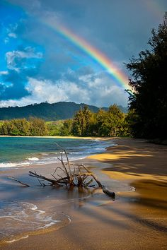 Rainbow in Kauai, Hawaii. No wonder they call Hawaii the rainbow state! Dream Vacations, Vacation Spots, Kauai Vacation, Places To Travel, Places To See, Travel Destinations, All Nature, Nature Images, Nature Pictures
