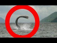 455 Best Loch Ness Monster, Scotland images in 2019 | Destinations