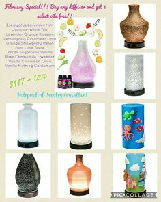 Pick your favorite diffuser at 10% off Then choose 3 select oils for FREE  only available for February. Hurry while supplies last Www.wendymichelle.scentsy.us