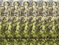 Here's a stereo gram. Not sure if it fits here, but if you look at this the right way, you'll see a image. (Hint: It involves a frog) Magic Eye Pictures, 3d Pictures, Hidden Pictures, Simple Optical Illusions, Eye Illusions, Magic Eye Posters, 3d Stereograms, Foto 3d, Illusion Pictures