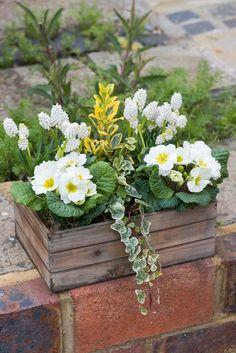JARNÍ TRUHLÍK Garden Studio, Diy Easter Decorations, Porch Decorating, Outdoor Gardens, Flower Power, Diy And Crafts, Pergola, Flora, Spring