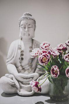 sixtydays 3 Carnations, Tulips, Flower Market, Entourage, Country Chic, Buddha, Floral Arrangements, Elsa, Sweet Home
