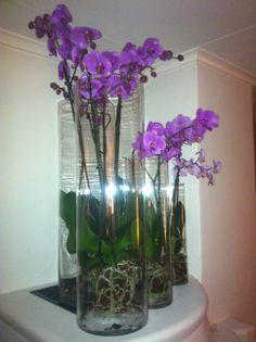 envers du decor orchids pinterest decoration fleurs et deco. Black Bedroom Furniture Sets. Home Design Ideas