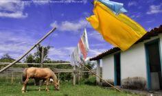 https://flic.kr/p/DzcyR5   Recanto Das Cachoeiras  08   Pousada Rural Facenda Recanto Das Cachoeiras . Sete Lagoas . Minas Gerais / Artexpreso . Rodriguez Udias / Sorrisos do Brasil . Fotografia . Dic 2015 / Fev 2016 (*PHOTOCHROME system edition)