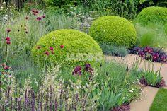 Un jardin à l'aménagement d'une grande liberté graphique, avec, en vedette, une sculpture contemporaine qui domine une végétation riche et originale.