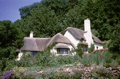 _Cottage,_Selworthy,_Somerset_