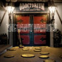 Listen to Everyone Is Totally Insane by The Dandy Warhols on @AppleMusic.