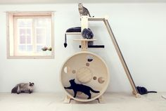 CAT PLAY TREE AND EXCECSISE WHEEN BY CATHWEEL