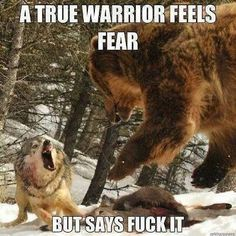 Funny pictures about True Warrior. Oh, and cool pics about True Warrior. Also, True Warrior photos. Wolf Quotes, Me Quotes, Motivational Quotes, Inspirational Quotes, Animal Quotes, Warrior Spirit, Warrior Quotes, Of Wolf And Man, Ju Jitsu