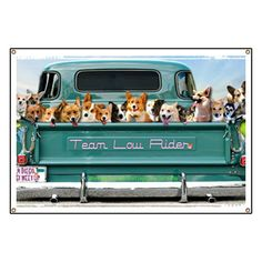 I love this, if only it were real... truck full of happy Corgis.