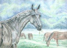 Андрианова Лариса. Туманное утро #art #watercolorpencil #drawing #horse