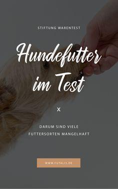 Stiftung Warentest hat verschiedene Hundetrockenfuttersorten sowie #Nassfutter getestet. Von den 23 geprüften Trockenfuttersorten enthielten 18 #Getreide, wie beispielsweise #Weizen, die anderen fünf Futtersorten sind als getreidefrei deklariert. Erfahre in diesem Beitrag, was an den getesteten Hundefuttersorten noch bemängelt wurde.   futalis.de #Hundefutter #Trockenfutter #Futtertest #Hundefuttertest Best Friends, Good Things, Fit, Hypoallergenic Dog Food, Best Food For Dogs, Healthy Dog Treats, Bunnies, Cats, Beat Friends