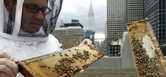 Beeehive on the Waldorf Astoria Hotel roof