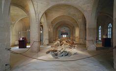 Museo Antiquarium di Favignana- Sicilia