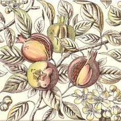 Historic Tiles - Victorian Tiles - Pomegranate Bush