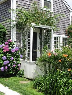 gray shingled house with vine-covered arbor entry...plus hydrangeas ♥