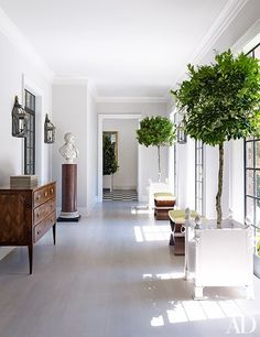 Find home décor inspiration at Architectural Digest. Everything you'll need to design each and every room in your house, from the kitchen to the master suite. Architectural Digest, Design Entrée, House Design, Design Elements, Modern Design, Indoor Trees, Potted Trees, Indoor Planters, Big Planters