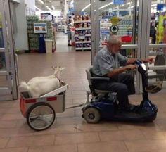 The Best People of Walmart - Answers.com