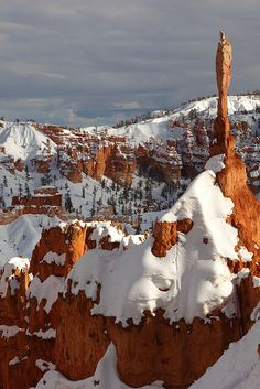 ~ Bryce Solitary Tower ~ Bryce Canyon, Utah....