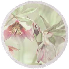 Jenny Rainbow Fine Art Photography Round Beach Towel featuring the photograph Spring Pastels by Jenny Rainbow