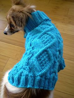 Free Pattern: Dog coat knitted in Seed stitch knitting ...