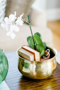 Phalaenopsis Orchid: http://www.stylemepretty.com/living/2015/04/07/10-indoor-plants-you-cant-kill/
