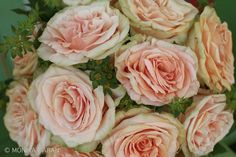 Romantic pink rose wedding bouquet