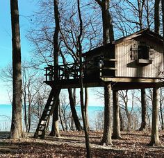 Treehouses, Tiny House Living, Travel Deals, Photo Credit, Craftsman, Gazebo, Cottage, The Incredibles, Outdoor Structures