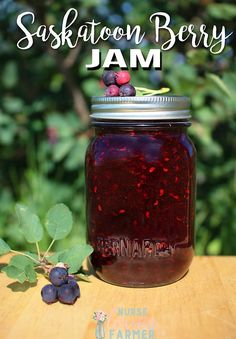 Canning fresh fruit is the perfect way to preserve summer flavours. Try this Saskatoon berry jam using Bernardin's new smooth jars. Saskatoon Recipes, Saskatoon Berry Recipe, Jelly Recipes, Jam Recipes, Canning Recipes, Freezer Jam, Blueberry Jam, Jam And Jelly, Fresh Fruit