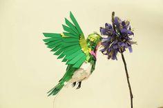 Diana Beltran Herrera Paper Hummingbirds are Surreal