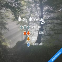 Misty Morning - Essential Oil Diffuser Blend