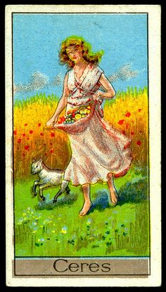 Cigarette Card - Ceres
