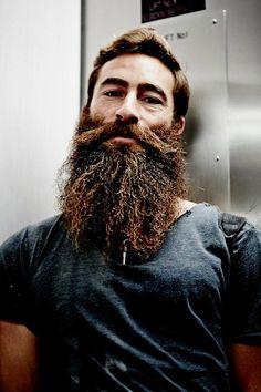Necessities s Hair, beard styles, no mustache beard necessities - Beard Beard Game, Epic Beard, Men Beard, Long Beard Styles, Hair And Beard Styles, Great Beards, Awesome Beards, Moustaches, Beard Growth Oil