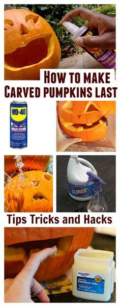 Tips & tricks to make carved pumpkins last for weeks!  No more rot!                                                                                                                                                                                 More