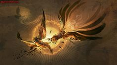 legend of the guardians | home > DS > Legend of The Guardians: The Owls of Ga'Hoole Gallery ...