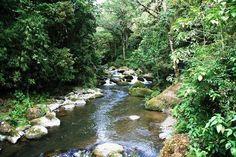 rio savegre san gerardo de dota  - Costa Rica
