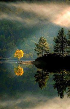 Quando O Reflexo da Natureza É Mágico...                                                                                                                                                      Mais