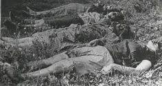 GENOCIDIUM ATROX ( Banderowskie Ludobójstwo na Ludności Polskiej Kresów Wschodnich): folwark Obliczyn pow. Hrubieszów: upowcy zamordowali 5-osobową rodzinę Kozłowskich (11.06.1944)