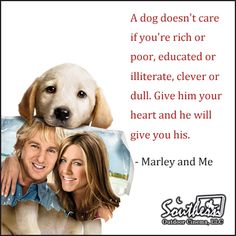 Movie Quote - Marley and Me