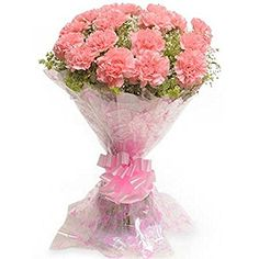 This sweet carnation Carnival is set to send your warmest wishes to your beloved ones, no matter the distance! This bunch of flowers comprises 15 pink carnations and some fillers packed in cellophane and tied with a pink ribbon giving it a lively look. Send Flowers Online, Order Flowers, Bunch Of Flowers, Fresh Flowers, Carnation Bouquet, Pink Carnations, Pink Roses, Beautiful Bouquet Of Flowers, Exotic Flowers