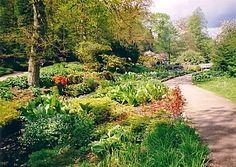 love English Gardens :)