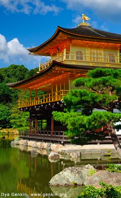 Kinkaku-ji (Golden Temple) is a Zen Buddhist temple in Kyoto, Japan • photo: Ilya Genkin on Flickr