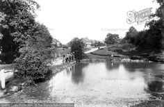 South Holmwood, Village Pond 1906, from Francis Frith