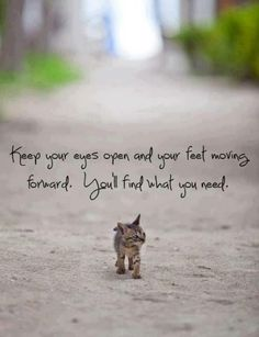 Keep your eyes open and your feet moving forward. You'll find what you need. <3